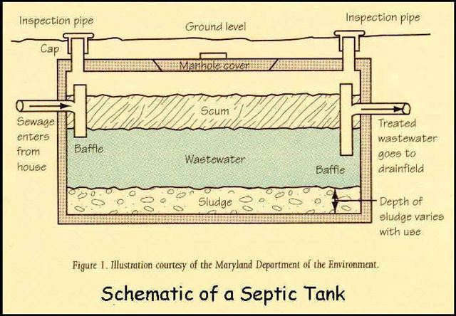 How does a septic system work?